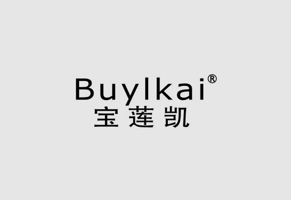 宝莲凯新濠天地网站登入战略定位