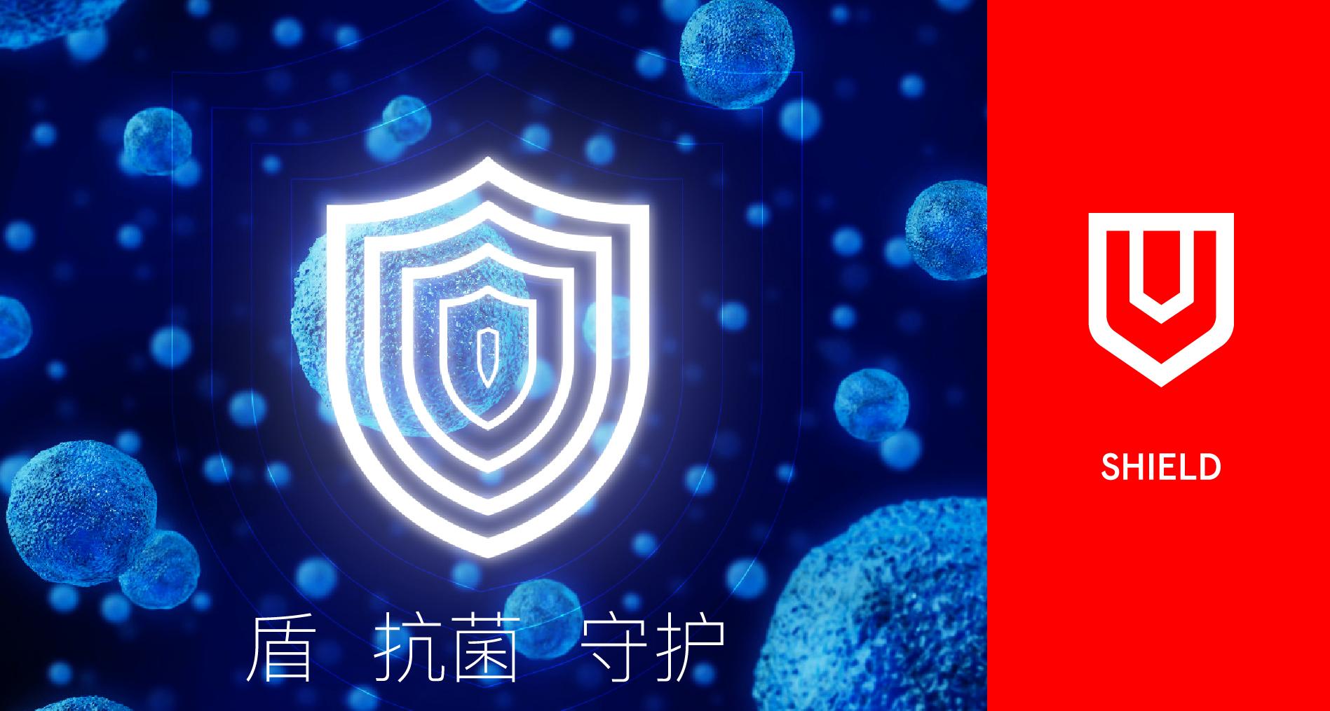 金辉厨刀的新濠天地网站登入创建(图30)